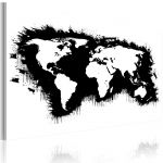 Obraz - Monochromatic map of the World