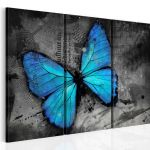 Obraz - The study of butterfly - triptych