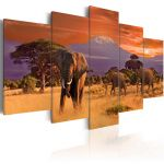 Obraz - Africa: Elephants