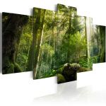 Obraz - The Beauty of the Forest   100x50, 200x100