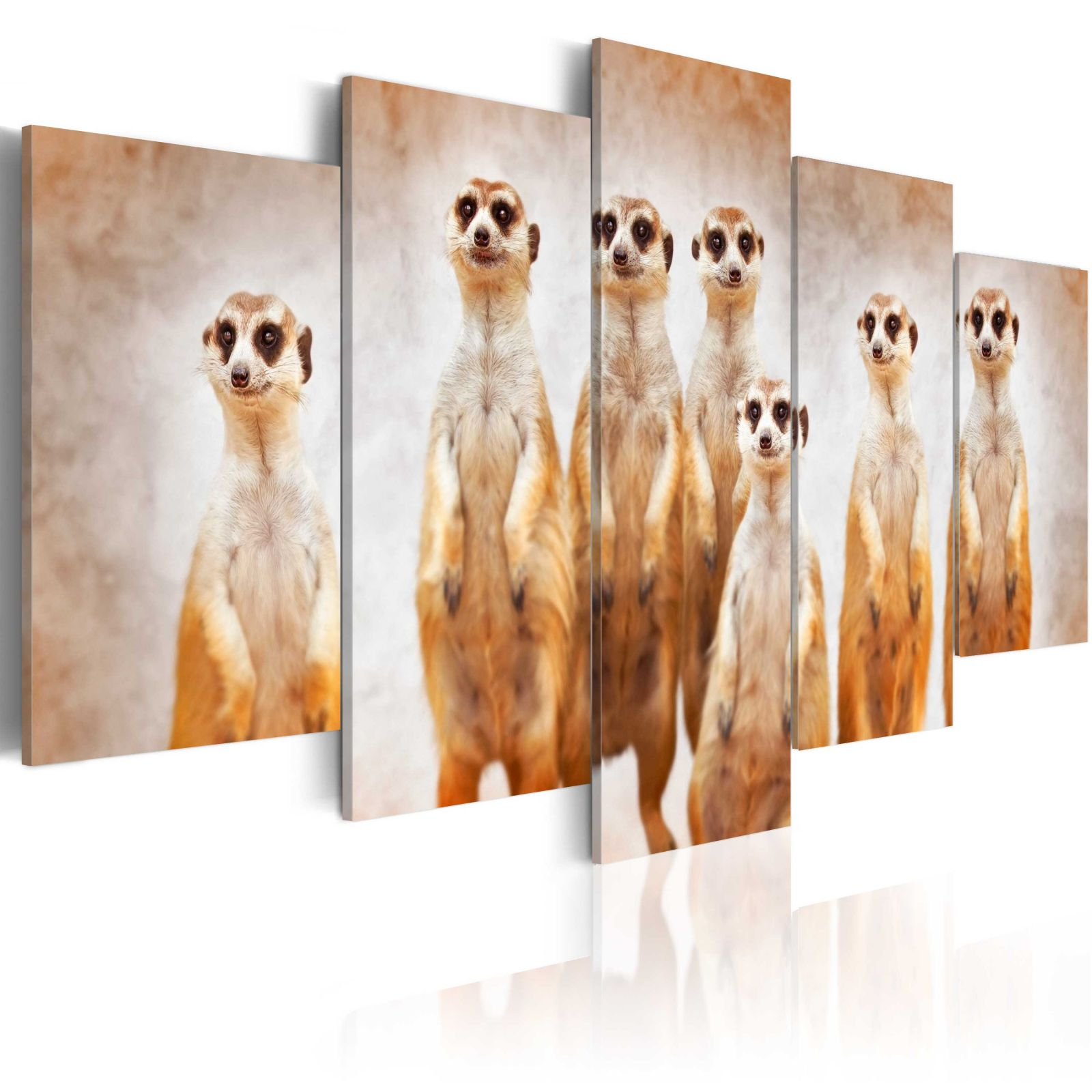 Obraz - Family of meerkats