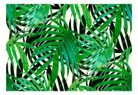 Fototapeta - Tropical Leaves