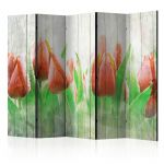 Paraván - Red tulips on wood