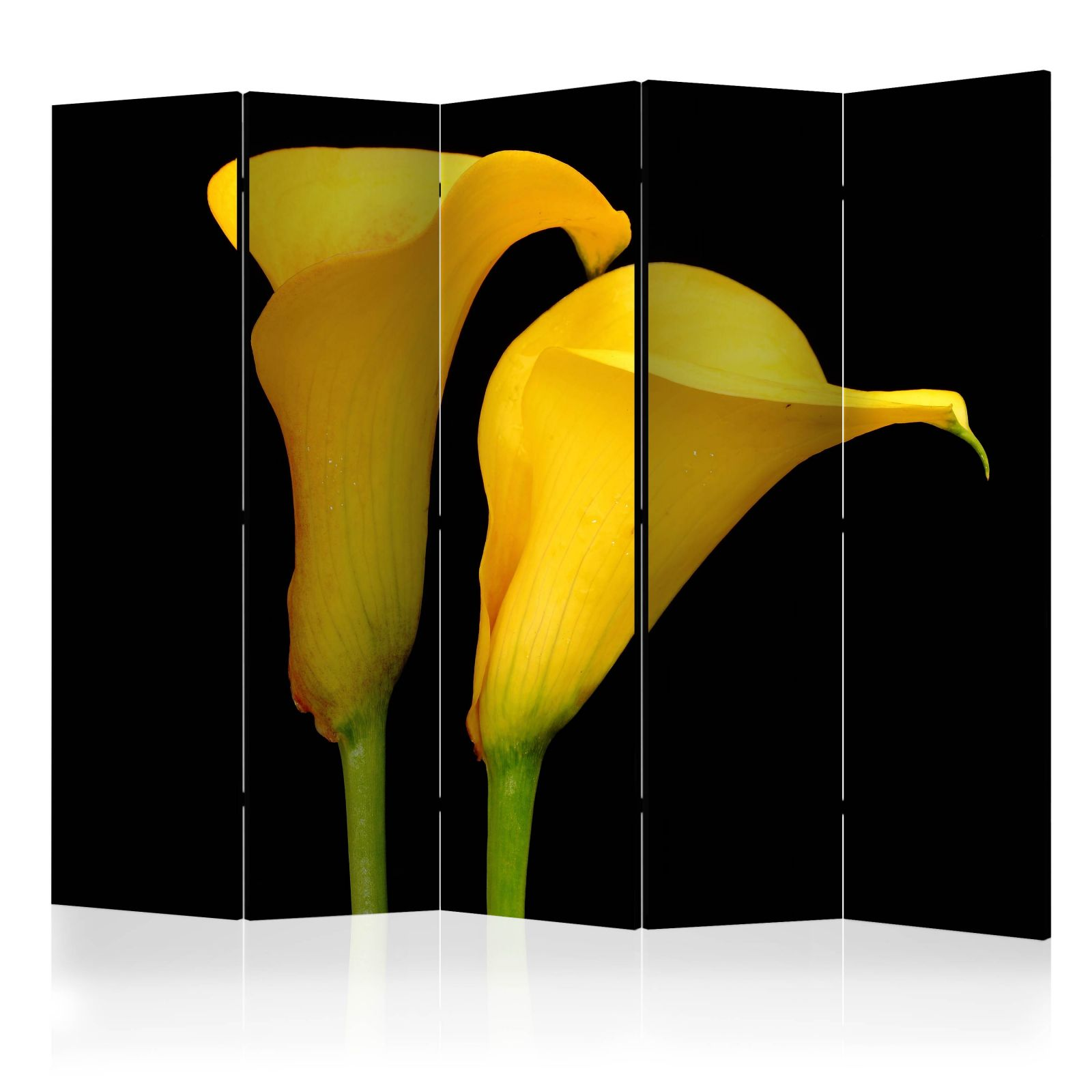 Paraván - Two yellow calla flowers on a black background II