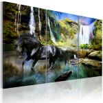 Obraz - Horse on the sky-blue waterfall background